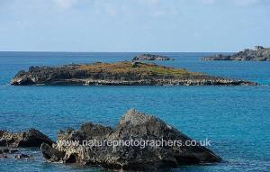 Petrel Islands